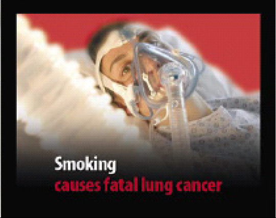 EU 2004 Health Effects lung - lived experience, lung cancer