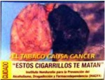 Honduras 2011 - Health Effect lung - Lung cancer, diseased organ2