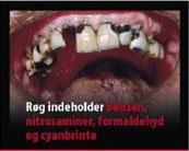 Denmark 2012 Constituents - diseased organ, benzene, nitrosamines, formaldehyde, hydrogen cyanide