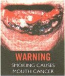 Brunei 2012 Health Effects Mouth - gross, lip, mouth cancer (English)