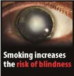EU 2016 Health Effects eye - blindness