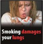 EU 2016 Health Effects lung - lung damage, blood