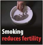 EU 2016 Health Effects sex - fertility, clever, targets parents