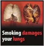 EU 2016-Set 3-Health Effects lung - lung damage