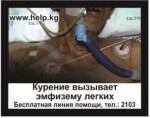 Kyrgyzstan 2016 Health Effects Lung - emphysema