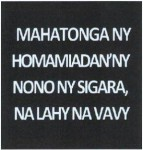 Madagascar 2013 Health Effects other- breast cancer (text)