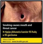 Malta 2016 Health Effects Mouth - larynx