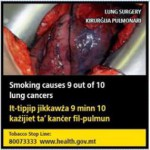 Malta 2016 Health Effects lung - diseased organ, lung cancer
