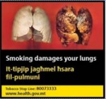 Malta 2016 Health Effects lung - diseased organ -set 3