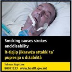 Malta 2016 Health Effects stroke - stroke and disability