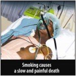 Mauritius 2009 Health Effects Death - hospitalized, lived experience_EN