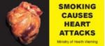 NZ 2008 Health Effects heart - diseased organ, clogged artery, gross_front