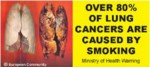 NZ 2008 Health Effects lung - lung cancer_front