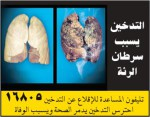 Egypt 2014 Health Effects Lung - lung cancer, diseased organ