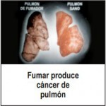 Panama 2008 Health Effects Lung - lung cancer, diseased organ