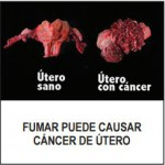 Panama 2014 Health Effects Other - Uterine cancer