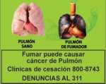Panama 2015 Health Effects Lung - Lung cancer, diseased organ