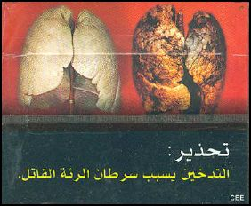 Djibouti 2009 Health Effects lung - diseased organ, lung cancer, gross - Arabic