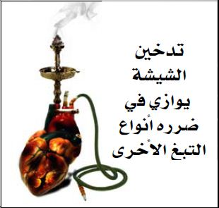 GSO 2011 Health Effects Other - shisha health risk, gross (Arabic)