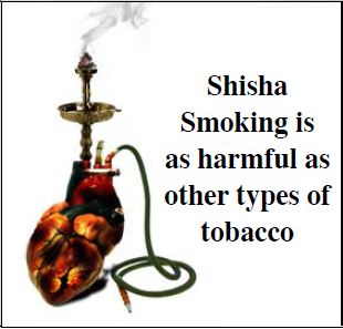 GSO 2011 Health Effects Other - shisha health risk, gross (English)