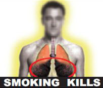 India 2011 Health Effects Lung - Diseased lung