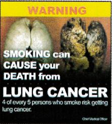 Jamaica 2013 Health effects lung - cancer, diseased organ (back)