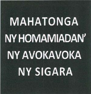 Madagascar 2012-2013 Health Effects lung - text