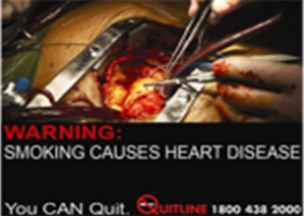 Singapore 2013 Health Effects heart - heart disease, open heart, graphic