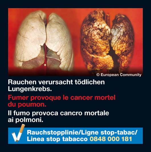 Switzerland 2010-2012 Health Effects lung - diseased organ, lung cancer, gross