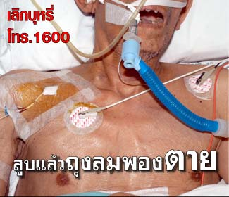 Thailand 2009 Health Effects other - lived experience, hospitalized
