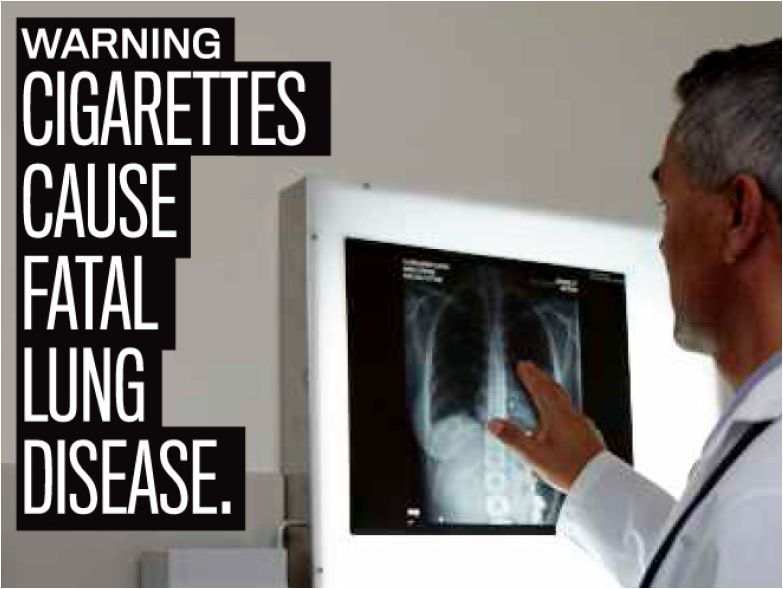 USA 2010 Health Effects lung - internal image, lung disease